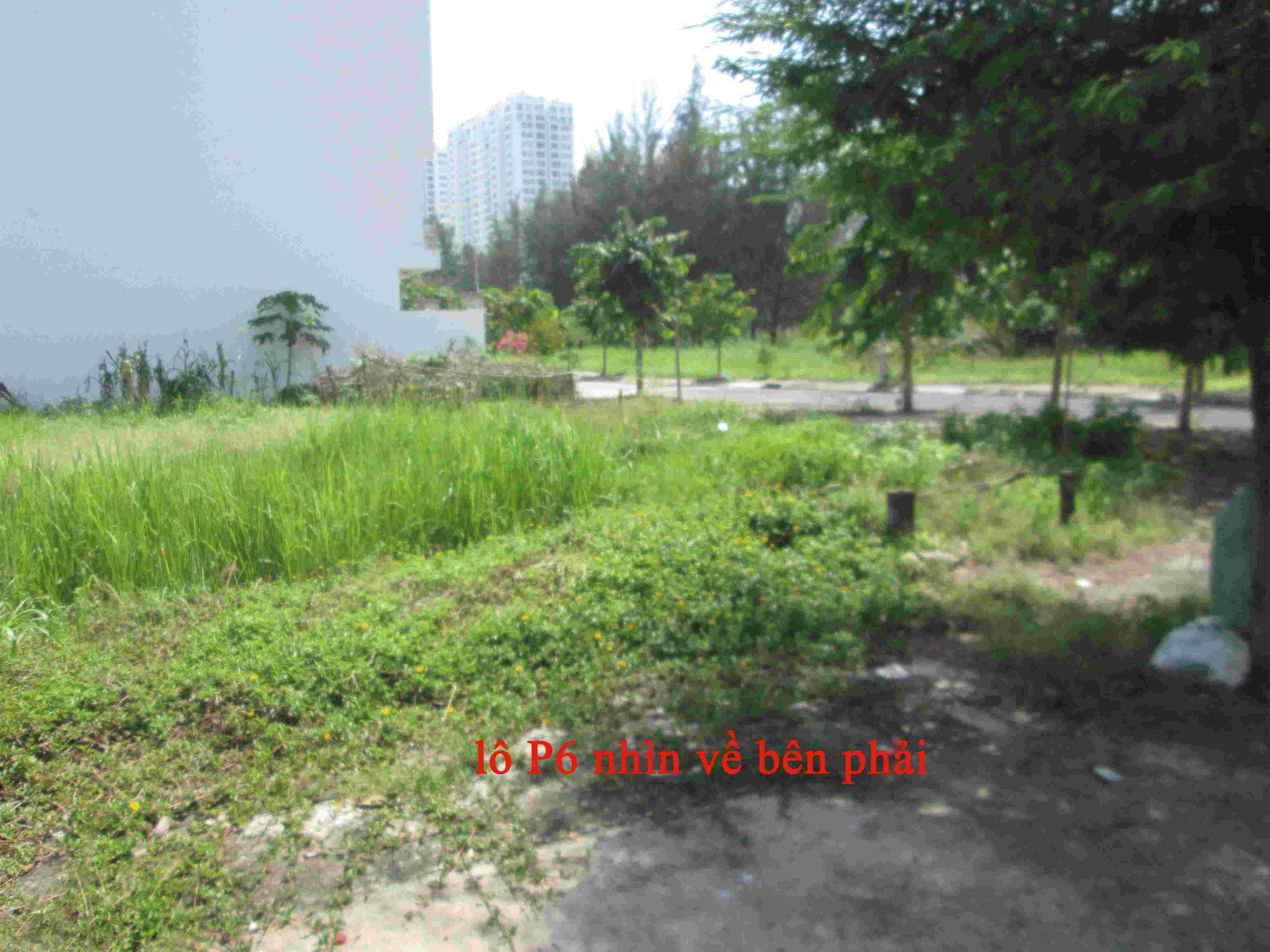 Bán đất nền nhà phố Sadeco Phước Kiển A,  đường 14m, lô E, 100m2, giá 63 triệu/m2