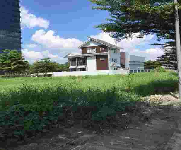 Bán đất nhà phố khu Sadeco Ven Sông Tân Phong Quận 7, lô O14, lô góc 2 mặt tiền đường số 8 rộng 20m, 131m2(8mx18m), giá 155 triệu/m2. LH: 0913.050.053