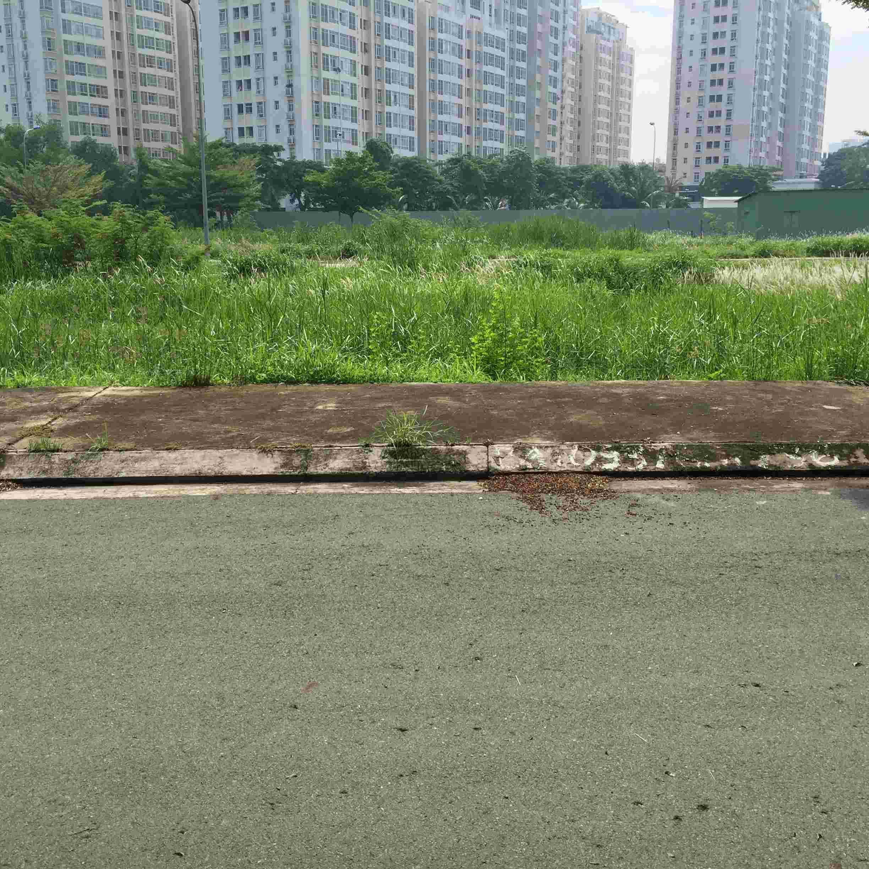 Cần bán nền đất biệt thự KDC Sadeco Nghỉ Ngơi Giải Trí Tân Phong giá rẻ, A76, hướng Tây, 250m2, giá 86 triệu/m2, cách Vivo City 50m